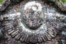 Elsdon-angels-1-1