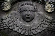 Elsdon-angels-16